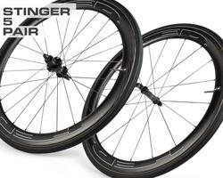 stinger5-p.jpg