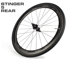 stinger5-r.jpg