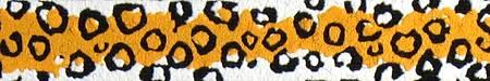 leopard-optimized.jpg