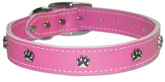 Leather Dog Collars with Silver Paws