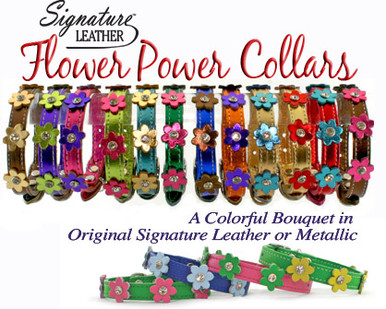 Flower Power Leather Dog Collars for small to medium size dogs.  High quality leather with leather flowers and crystals.  Chrome Hardware.  Available in many color combinations.