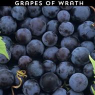 Grapes of Wrath eLiquid