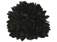Black opium double hair flower clips