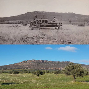 75 years since establishment - then and now