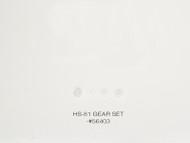 HS-81 GEAR SET