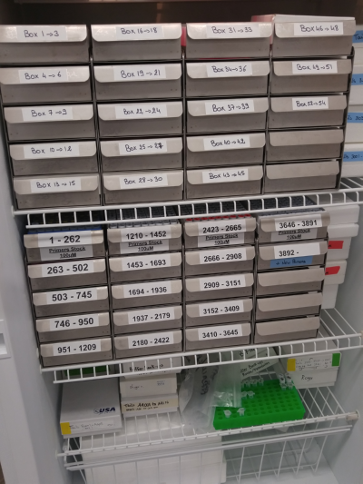 neat-and-organized-lab-freezer-stellar-scientific.original.png