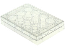 NEST Scientific 12 Well Tissue Culture Treated Plate, Sterile, Individually Wrapped, 50/CS