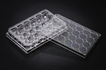 Stellar Scientific 24-Well Tissue Culture Treated Plates 50/CS