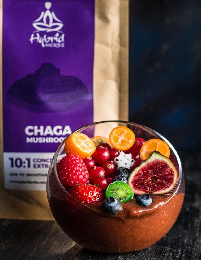 chaga-mushroom-chocolate-smoothie-1.jpg