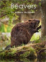 Beavers - Level I/16