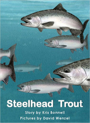 Steelhead Trout - Level H/13