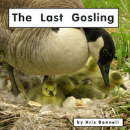 The Last Gosling - Level E/6