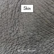 Skin - Level B/2