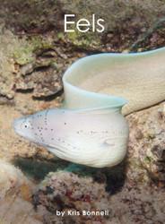 Eels - Level G/12