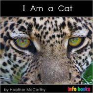 I am a Cat - Level B/2