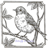 Bird Bluebird Branch Square Wood Mounted Rubber Stamp NORTHWOODS - PP8421 New