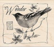 Bird Wonder Wood Mounted Rubber Stamp Susan Winget by Inkadinkado NEW