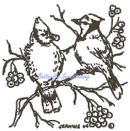 Bluejay Birds on Berry Branch Wood Mounted Rubber Stamp NORTHWOODS CC7687 New