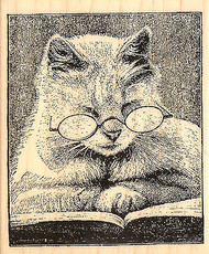 Cat Cattus Librum Wood Mounted Rubber Stamp Stampendous V239 NEW
