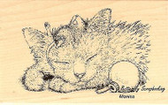 CHRISTMAS Friendly Dreams Wood Mounted Rubber Stamp STAMPENDOUS HMM06 New
