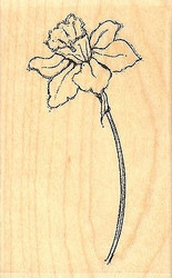 Daffodil, Wood Mounted Rubber Stamp IMPRESSION OBSESSION - NEW, D14406