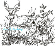 Deer Family Laying In The Grass, Wood Mounted Rubber Stamp NORTHWOODS - P615