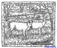 Deer Pair In Birch Frame, Wood Mounted Rubber Stamp New NORTHWOODS - P6873