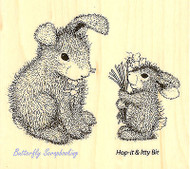HAPPY HOPPERS Bunny Forget Me No Wood Mounted Rubber Stamp STAMPENDOUS HHQ05 New
