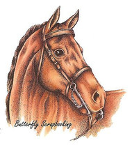 HORSE Head Country Cowboy Cling Unmounted Rubber Stamp C.C. Designs JD1044 New