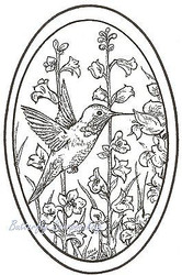 Hummingbird & Bell Flower, Wood Mounted Rubber Stamp NORTHWOODS - NEW, P6924