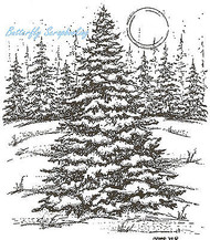 Large Snowy Spruce In Forest, Wood Mounted Rubber Stamp NORTHWOODS - NEW, P3878