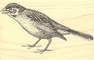 Lark Finch Bird Wood Mounted Rubber Stamp JUDIKINS, NEW - 3565H