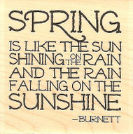 Like The Sun Text, Wood Mounted Rubber Stamp IMPRESSION OBSESSION - NEW, D14409