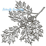 Oak Cluster With Acorns, Wood Mounted Rubber Stamp NORTHWOODS - NEW, M3707