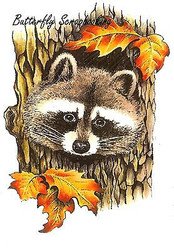 RACCOON In Tree Stump Cling Unmounted Rubber Stamp C.C. Designs JD1023 New