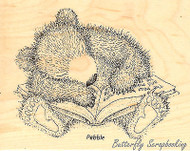 Sleepy Reader HOUSE MOUSE GRUFFIES Wood Mounted Stamp STAMPENDOUS, NEW- HGRV01