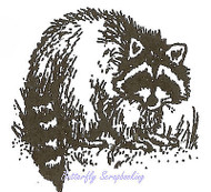 Small Raccoon, Wood Mounted Rubber Stamp NORTHWOODS - NEW, B9525