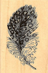 Spotted Feather, Wood Mounted Rubber Stamp STAMPENDOUS, NEW - M322