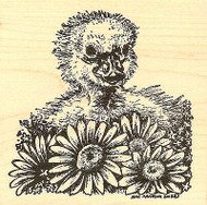 Spring Duckling And Daisies, Wood Mounted Rubber Stamp NORTHWOODS - NEW, PP9714