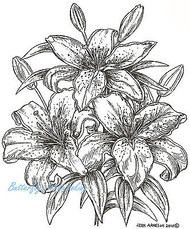 Stargazer Lilies Flowers, Wood Mounted Rubber Stamp NORTHWOODS - P7352