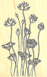 Tall Lilies Flowers Wood Mounted Rubber Stamp Impression Obsession L Hannan New