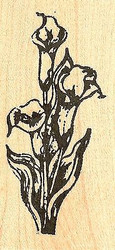 Three Calla Lilies, Wood Mounted Rubber Stamp NORTHWOODS - NEW, D7926