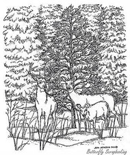 Three Deer With Spruce Forest, Wood Mounted Rubber Stamp New NORTHWOODS - P8325