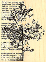 Tree Poem Lisa Hindsley Wood Mounted Rubber Stamp Stampendous Stamp R164 NEW