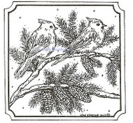 Tufted Titmice On Spruce Wood Mounted Rubber Stamp Northwoods Rubber Stamp New