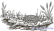 Turtle On Log With Cattails Wood Mounted Rubber Stamp NORTHWOODS M3613 New