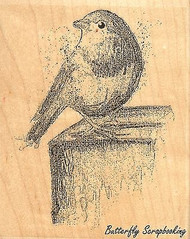 Watercolor Robin, Wood Mounted Rubber Stamp IMPRESSION OBSESSION - NEW, F13261