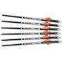 Ravin Premium .001 Arrows - 400 Grain