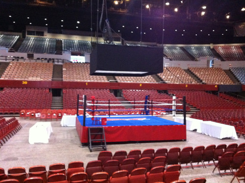 Professional Event Boxing Ring Rental