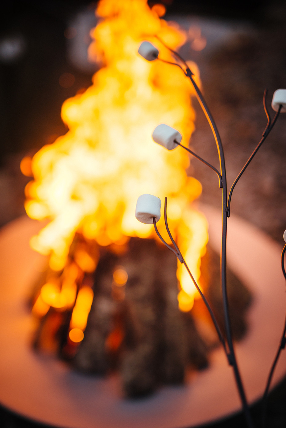 Nothing better than roasting marshmallows over an open fire in style with this branch style Marshmallow Roasting Art.